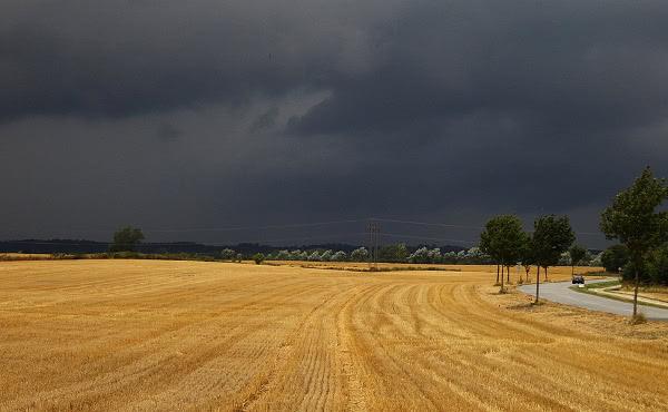 La lluvia llegó y la granja estaba a salvo