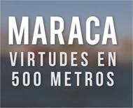 Maraca