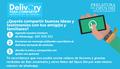 """""""Delivery para compartir"""": artículos, notas y videos en tu Whatsapp para enviarlo a tus contactos"""