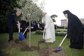 Papa divulga tema para o 50º Dia Mundial da Paz