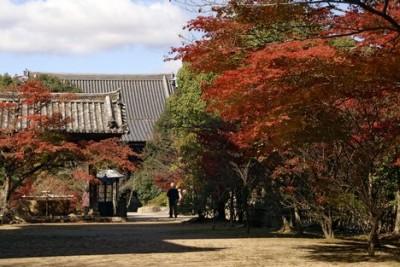 Templo budista Taisanji, en Kobe