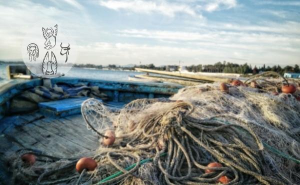 Au fil de l'Évangile de jeudi : le filet du pêcheur
