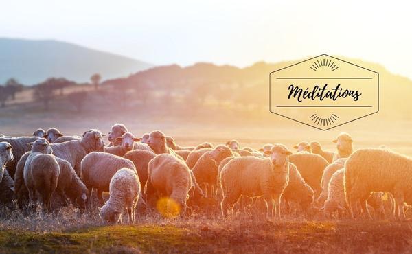 Opus Dei -  Méditation : 4ème dimanche de Pâques
