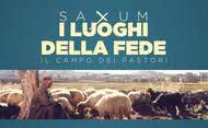 Saxum: i luoghi della fede - Campo dei pastori