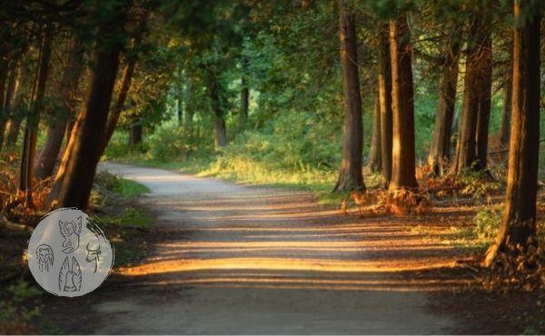 Evangelio del martes: tomar el camino que lleva a la vida