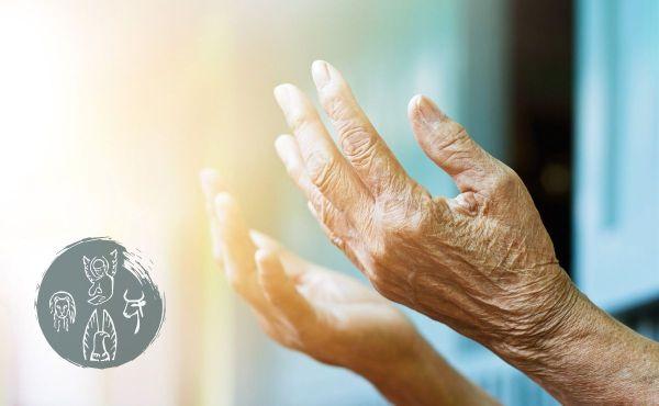 Opus Dei - Commento al Vangelo: Si mise anche lei a lodare Dio