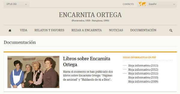 Documentación sobre el proceso de Encarnita