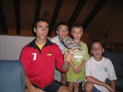 David, Juan, Guille y Joaquín domesticando un mochuelo.