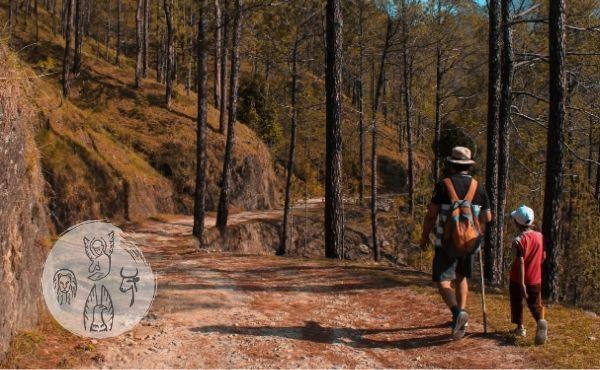Au fil de l'Évangile de vendredi : Jésus, chemin et modèle du voyageur.