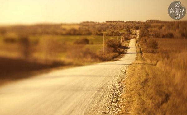 Au fil de l'Évangile de dimanche : l'unité de vie