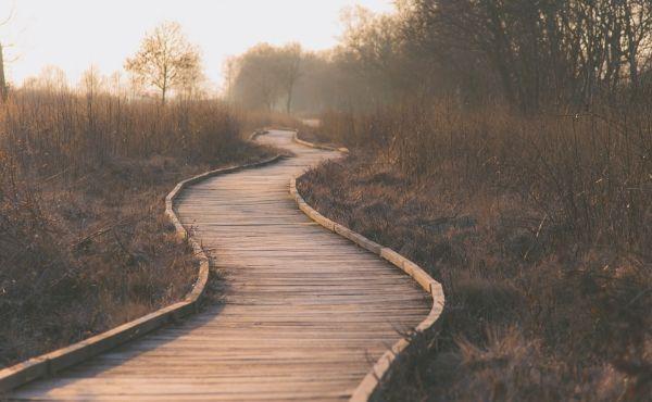 Commento al Vangelo: Sulla via di Emmaus