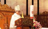 Homily of Bishop Cinense on the feast of Blessed Alvaro