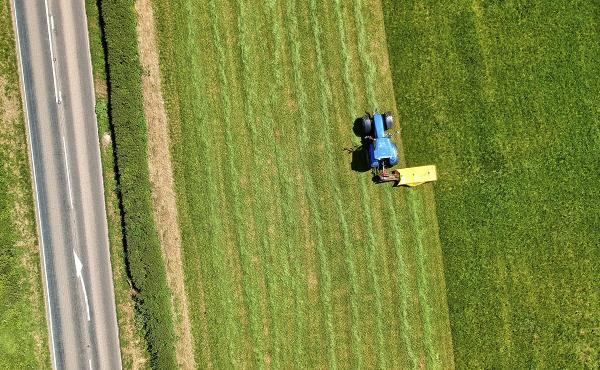 Commentaire d'Évangile: Parabole du semeur