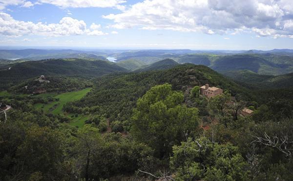 El Pas dels Pirineus (III)