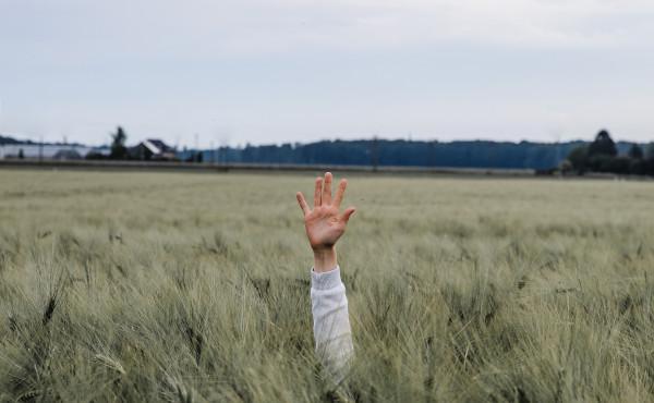 Commentaire Évangile : Le bon samaritain