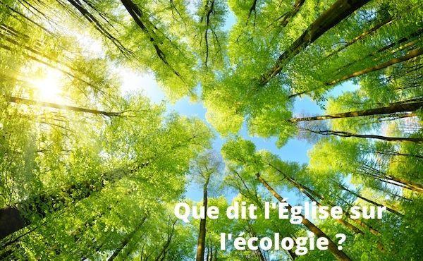 Que dit l'Église sur l'écologie ?