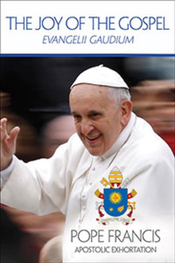 「あふれる光」:使徒勧告「福音の喜び」について属人区長の記事