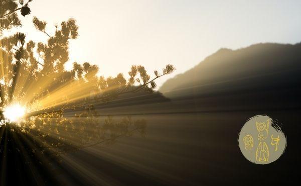 6 de agosto: Transfiguración del Señor