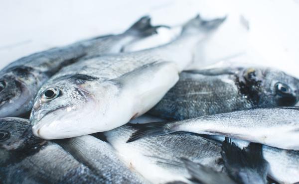 Commentaire d'Évangile: des pains et des poissons