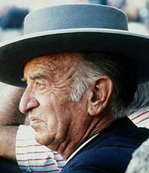 アルバロ・ドメックの追悼