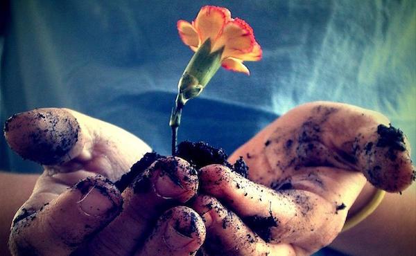 Opus Dei - Ökologische Vernunft fragt vor allem nach der Eigenverantwortung