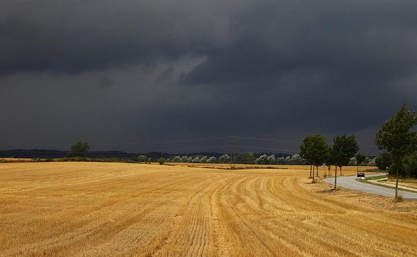Opus Dei - La pioggia è arrivata e la fattoria si è salvata