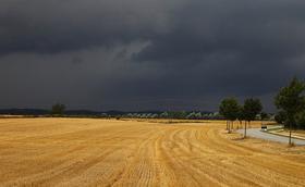 La pluja va arribar i la granja perillava