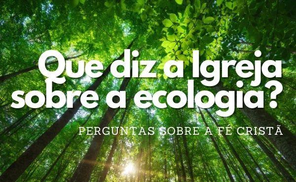 Que diz a Igreja sobre a ecologia?