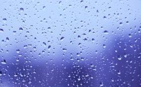 下雨了,农田有救了!