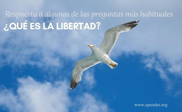 ¿Qué es la libertad? ¿La persona es realmente libre?
