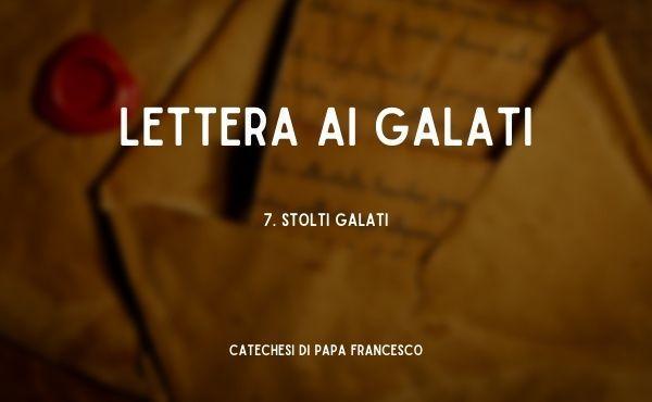 7. Stolti Galati