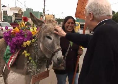 En un viaje a Perú, acaricia un burro.