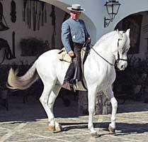Álvaro Domecq en su finca 'Los Alburejos', en Jerez de la Frontera