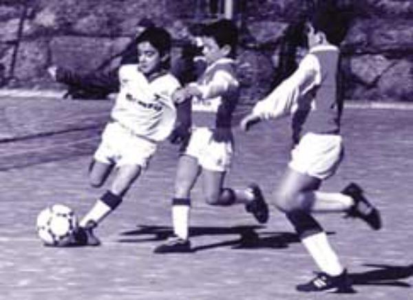 Fundació Brafa, esport i cultura