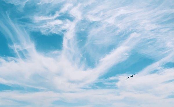 Opus Dei - Evangelio del jueves: acoger el reino de Dios