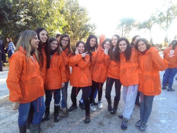 Incêndios em Portugal: ajudar Serpins, Mangualde, Oliveira do Hospital e Seia