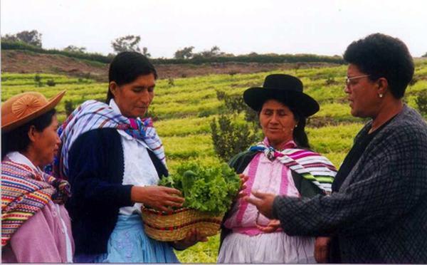 Condoray: Centre de formation pour la femme, Pérou