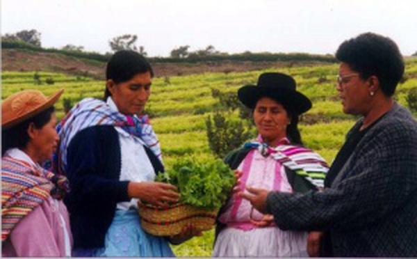 Das Zentrum Condoray in Peru