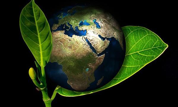 Déu i l'ecologia integral
