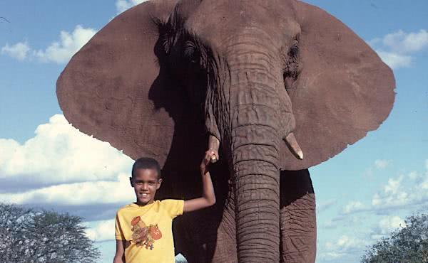 L'home que caminava amb els elefants