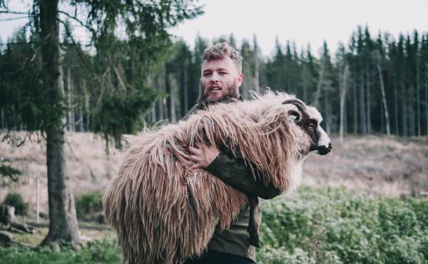 Comentario al evangelio: La oveja perdida