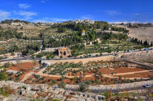 Gethsémani : prière et agonie de Jésus