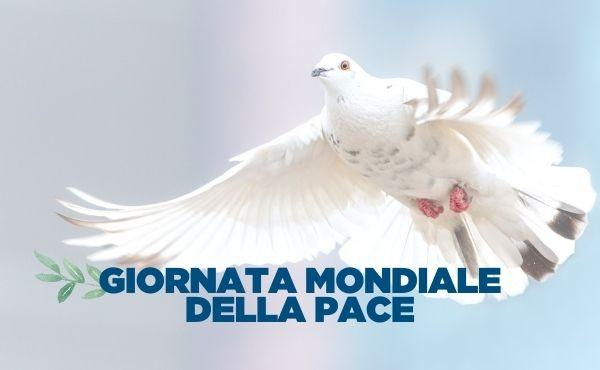 Papa Francesco: La cultura della cura come percorso di pace