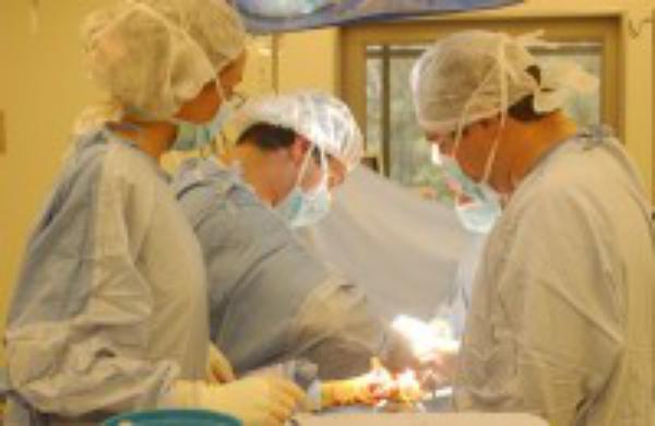 Labor solidaria desde el Hospital Universitario Austral (Argentina)