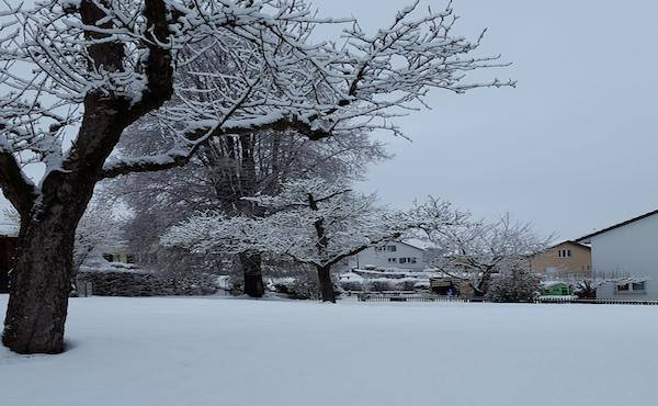 Des traces dans la neige : 90 ans au service de la société.