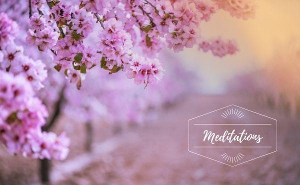Méditation : Jeudi de la 5ème semaine de Pâques