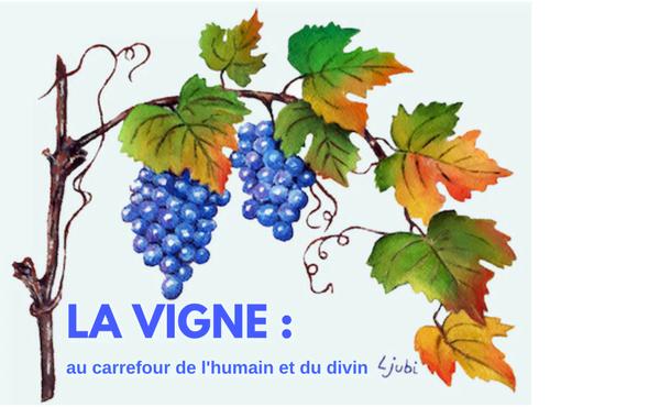 La vigne au carrefour de l'humain et du divin