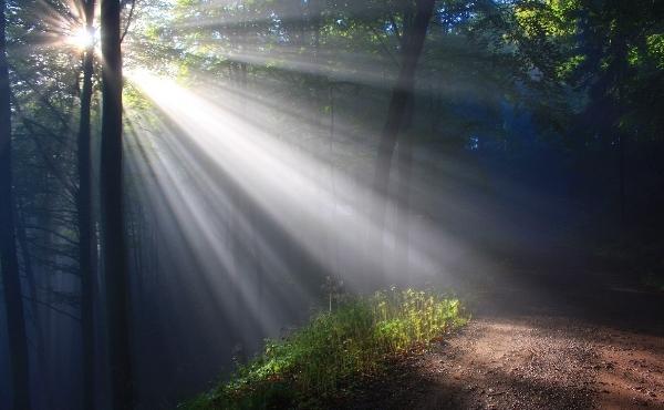 Opus Dei - Meditazioni: mercoledì della 2ª settimana di Pasqua