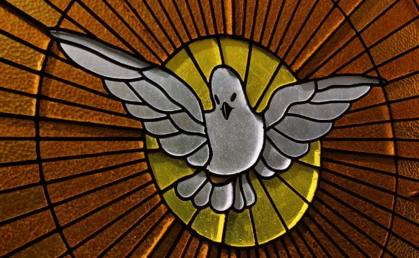 O Espírito Santo, Amor que leva ao Amor
