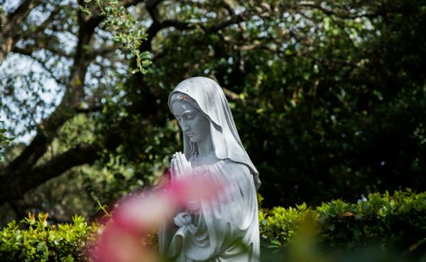 A Virgem Santa, causa da nossa alegria: homilia em áudio